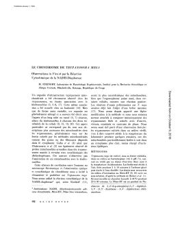 LE CHONDRIOME DE TRYPANOSOMA MEGA Observations in Vivo