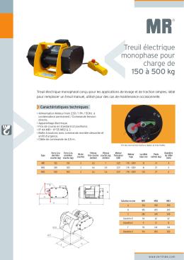 Treuil électrique monophase pour charge de 150 à 500 kg