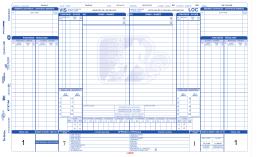 game sheet - Ligue Elite du Richelieu AA